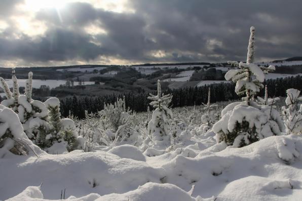 Geert Vanhaverbeke - Sneeuwlandschap_web