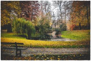14-Nov-sahe-park heule_web
